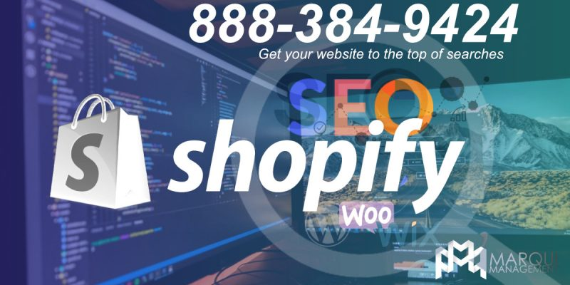 Shopify SEO, Shopify Marketing Consulting